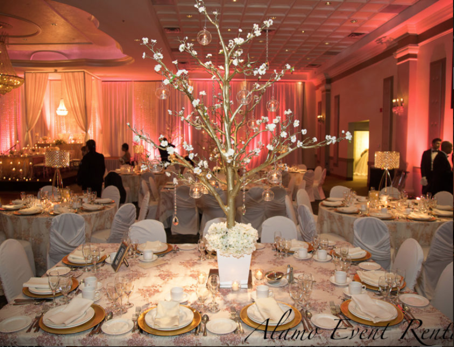 Alamo Event, one of the party rental companies in Toronto