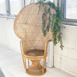 Vintage Wicker Peacock Chair Rental