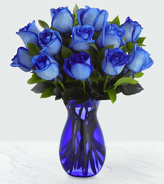 Flower Company Blue Roses for Delivery and Pickup