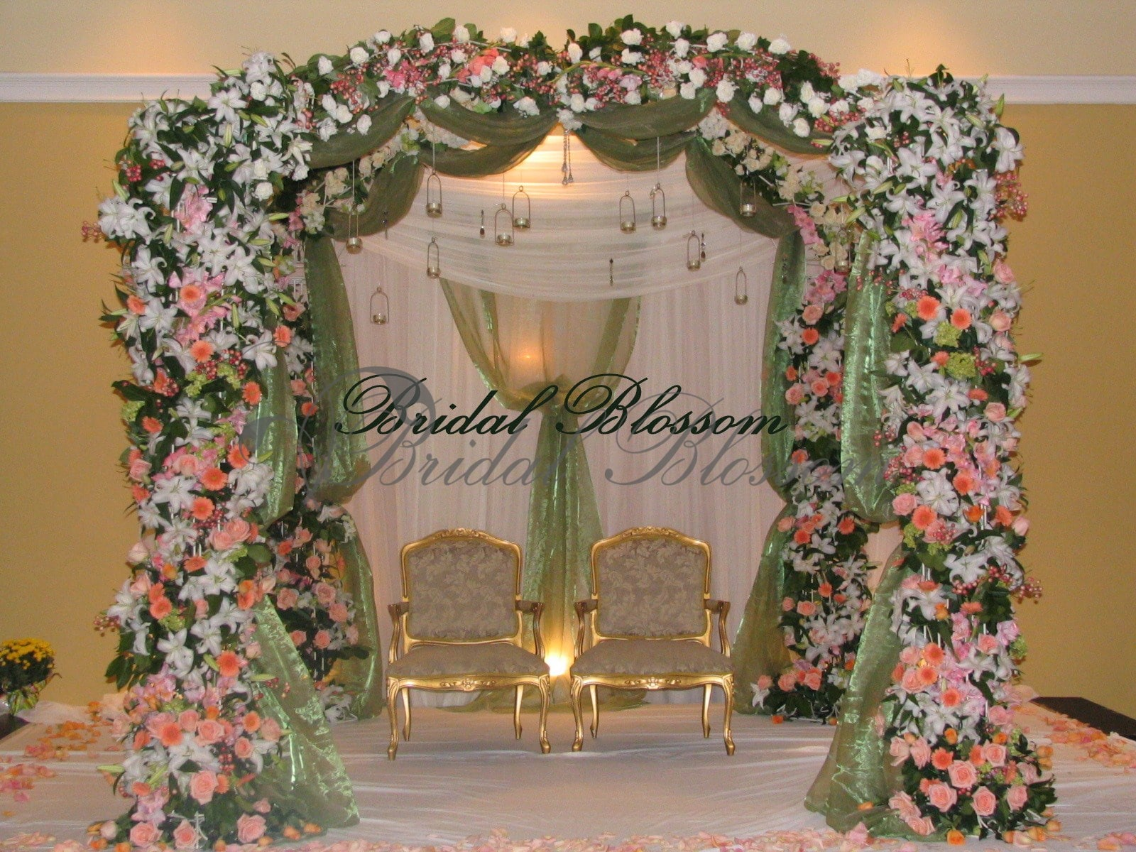 Bridal Blossom arch and backdrop