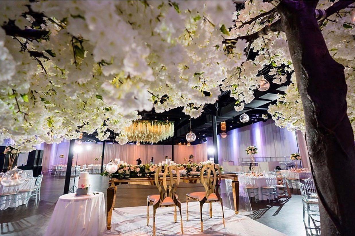 party rental companies in toronto